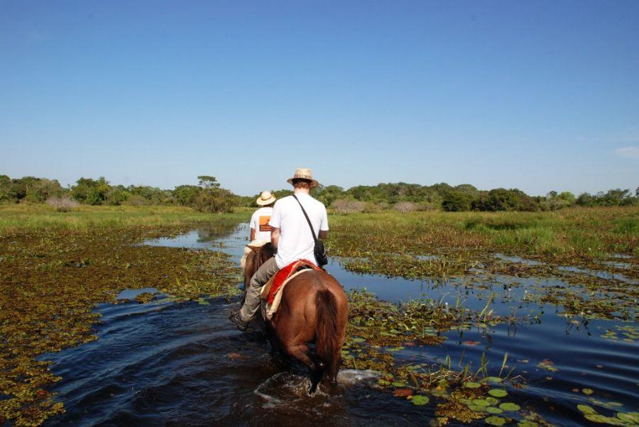 cavalgada no pantanal